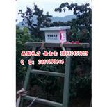 【定制】直丝防鸟刺弹簧防鸟刺高品质低价格--中国采招网