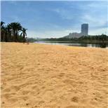 沙滩砂--中国采招网