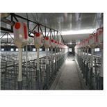 养殖设备--采招网
