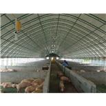 养殖大棚--采招网