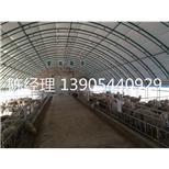 畜牧温室大棚--采招网